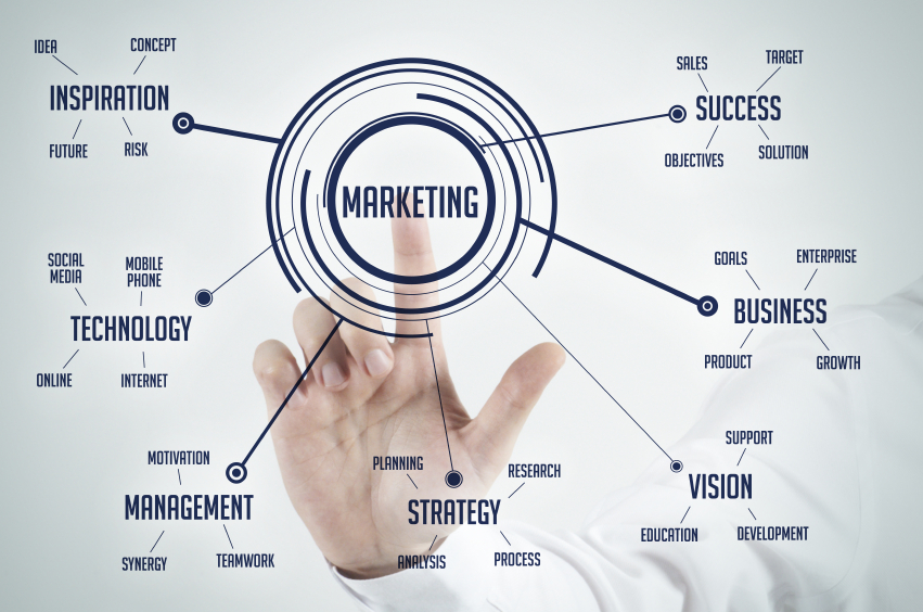 Why a Marketing Director is Essential